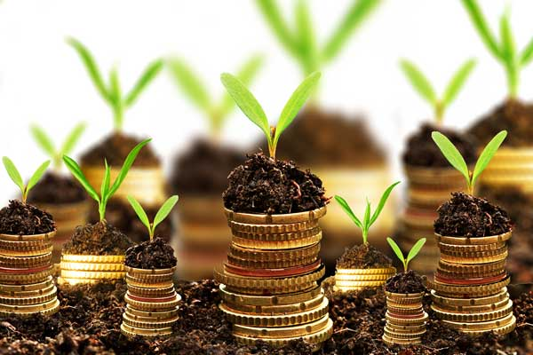 بودجه ریزی بازاریابی Budgeting