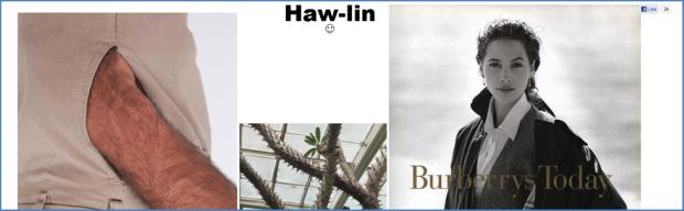 haw-lin